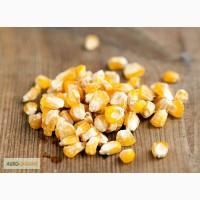 Продаем агрохимию для кукурузы и др. культур
