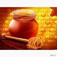 Украинский мед