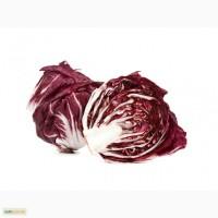 Радиччио салат