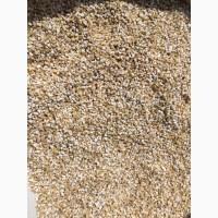 Продам крупу пшеничную нал/безнал
