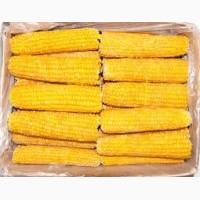 Кукуруза сладкая початок шоковой заморозки