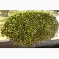 Закупаем лекарственные травы мелким оптом, Полтавская обл