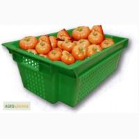 Ящики пластиковые многооборотные для помидоров
