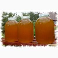 Продам экологически чистый мёд Лучшее качество! Низкая цена 3 литра