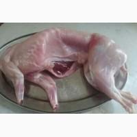 Мясо домашнего кролика