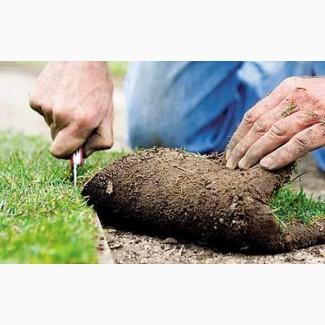 Предлагаем продажу с доставкой и разгрузкой и укладкой качественный Рулонный газон