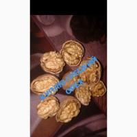 Куплю грецкий орех 2017 года