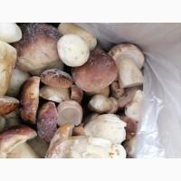 Продам білі гриби морожені