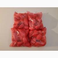 Картошка эстонская упакованная 2=4кг мытая чистая высший сорт
