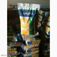 Конди семена подсолнечника. Низкие цены
