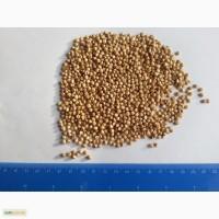 Продам сорго белое без ГМО. Без танина. от 20 тонн