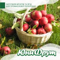 Покупаем яблоки для промышленной переработки