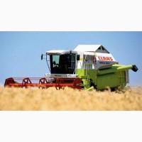 Услуги по уборке урожая зерновых и подсолнечника