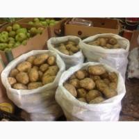 Продам молодой картофель. Сорт цена 12-00