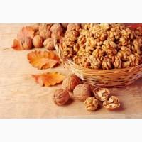 Принимаем заказы на заготовку грецкого ореха и целого бойного ореха