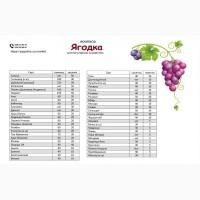 Саженцы (черенки) винограда: Подарок Несветая, Памяти Учителя, Академик, Дубовский розовый