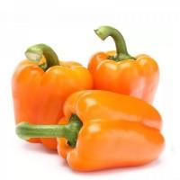 Продам перец болгарский сладкий оранжевый из Египта экспорт, купить оптом доставка