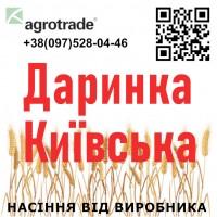 Семена озимой пшеницы Даринка Киевская от ...