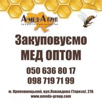 Закуповуємо мед оптом АМЕДА ГРУП Кіровградська, Черкаська, Полтавська, Миколаївська обл