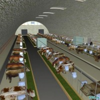 Строительство животноводческих комплексов