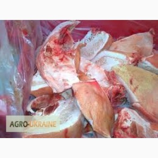 Продам баки свиные