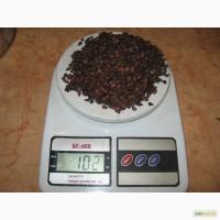 Косточки, семена айвы, магалебки (антипки)
