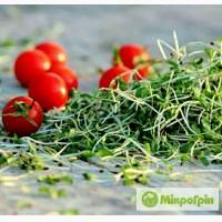 Мікрогрін, Микрогрин, Микрозелень, Microgreens