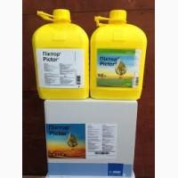 Піктор - ефективний фунгіцид для ріпаку та соняшнику