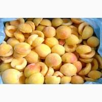 Купить замороженный абрикос оптом