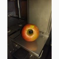 Машина для резки яблок с удалением сердцевины. Яблокорезка