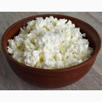 Продам Сир Кисломолочний 9%та 18% жирності ваговий 5 кг