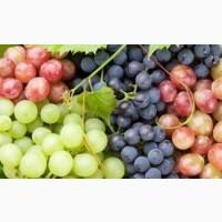 Акция Виноград Разных Сортов