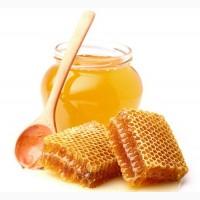 Продам якісний соняшниковий мед 2020