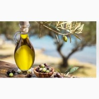 Оливковое масло продам