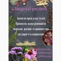 Насіння, саджанці, трава лікарських рослин