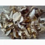 Сухі білі гриби