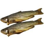Рыба толстолоб копченый пласт и др. оптом