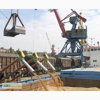 Пшеница 4 класса FOB порты Черного моря