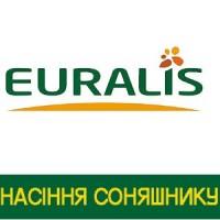 Семена подсолнечника Евралис Семенс, Еuralis Франция, Белла, Ниагара, Петуния, Балистик