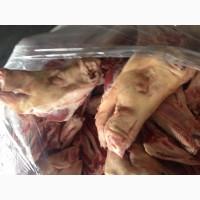 Куплю свиные и говяжие субпродукты ДОРОГО