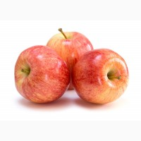 Куплю яблука ГАЛА, 1-й сорт, калібр 6, 5