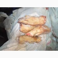 Продам ноги свиные