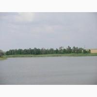 Продам водоем для рыбного хозяйства осетровой фермы