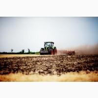 Услуги по обработке земли (пахота, дисковка, культивация, глубокорыхление)