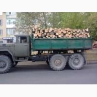 Продам дрова кругляк або колені твердих порід дерева (дуб, бук, граб)