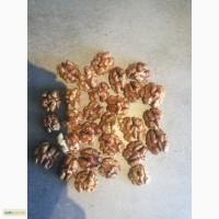Грецкий орех, бабочка четверть восьмушки 1-2 класс