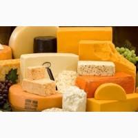 Продам твердый сыр оптом