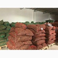 АКЦИЯ продам грецкие орехи урожай 2018 года