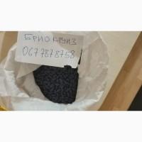 Продам семена Брио НК Круизер (подсолнечник)