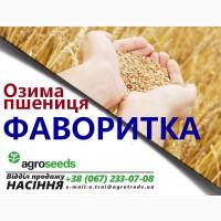 Семена пшеницы Фаворитка / элита / Агротрейд, Харьковская обл